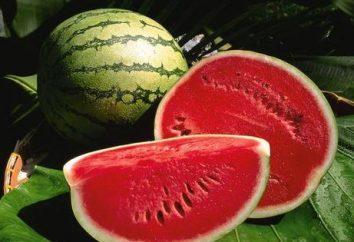 Jakie witaminy w arbuza i ich wpływ na zdrowie? Skład chemiczny arbuza, kalorie, wartości odżywczej