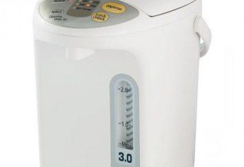 Como escolher Thermo? Como escolher Thermo para a casa? Fotos, críticas, recomendações