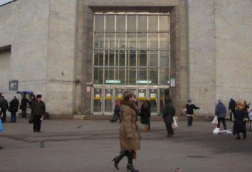 """Station """"Dybenko"""" – die U-Bahn, die einen Besuch in St. Petersburg wert ist"""