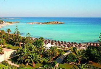 Chipre The Dome Beach Hotel 4 * – una descripción, fotos, precios y comentarios