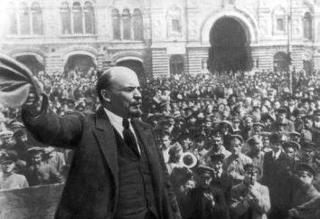 Przyczyny zwycięstwa bolszewików w wojnie domowej: prehistoria wojny i utrata wojny