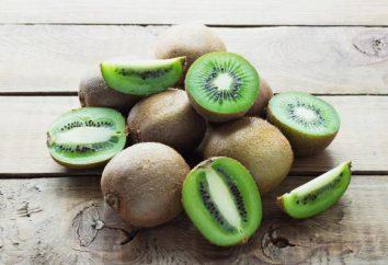 Drzewo Kiwi: opis i interesujące fakty