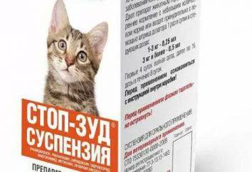 """""""Stop Itch"""" (suspensión para los gatos): descripción, composición, modo de empleo y la retroalimentación"""