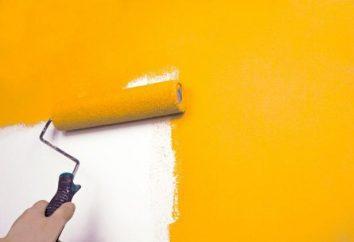 Pintar as paredes na lavável cozinha: látex, acrílica, látex. Qual escolher?