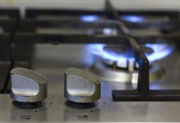 Welches Gas in der Wohnung – eine natürliche oder verflüssigte?