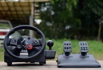 Kierownica Logitech Driving Force gra GT: przegląd, konfiguracja, właściwości i opinie