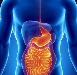 Un síntoma de problemas intestinales, como se manifiesta?