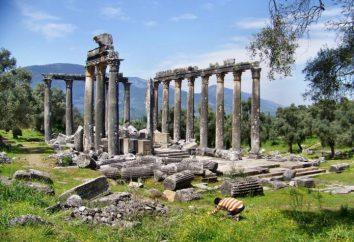 Świątynia Zeusa i jego Metopy