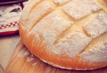 """Como assar pão em multivarka """"Redmond."""" pão branco ou de centeio – você decide"""