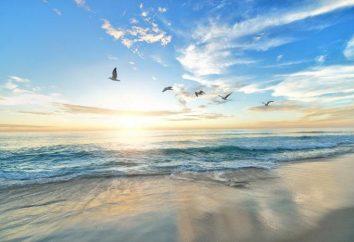 Was ist das Meer? Klassifizierung der Meere