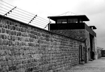 campo de concentração de Mauthausen, na Áustria fotos. Prisioneiros do campo de concentração Mauthausen