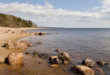 La pêche sur le golfe de Finlande sur la digue. Pêche en Juin