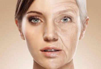 Toda a verdade sobre como o colágeno age no corpo