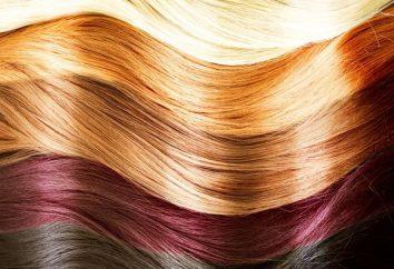 """Die Palette der Haarfarben """"Kapus"""": immer perfektes Ergebnis"""