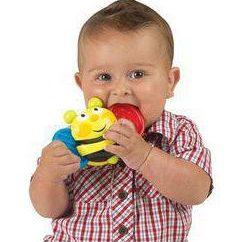 brinquedos inteligentes Iq Brinquedos e treinamento eficaz