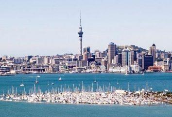 Nueva Zelanda, Auckland – Marvel en el punto de la mar y el océano colisión!