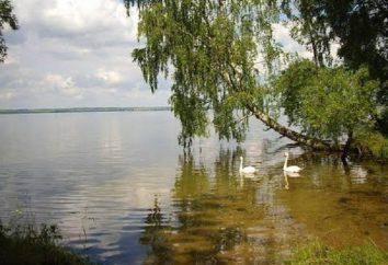 Lago Ostelli Vishtynetskoe a Kaliningrad