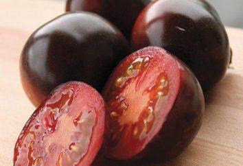 Indigo Rose Tomate: Beschreibung der Sorte, Anbau, Bewertungen