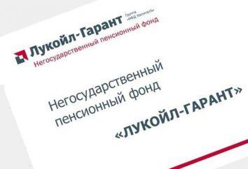 """NPF """"Lukoil-Garant"""": eine Überprüfung der Arbeit des Fonds"""