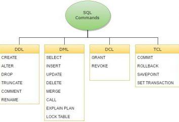 commande requêtes SQL
