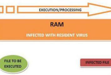 vírus residentes: o que é e como destruir. Os vírus de computador