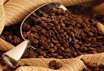 Café: espécies e variedades. receitas favoritas