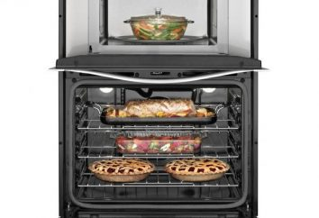 Wie reinige ich den Ofen aus verbranntem Fett zu Hause?