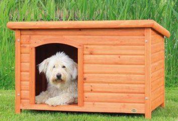 Ciepłe hodowla dla psa własnymi rękami. Łatwe i szybkie rozwiązanie