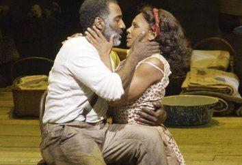 Che cosa è un musical, ma operetta modernizzato?