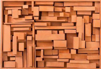 Porowate bloki: cechy, zalety i wady