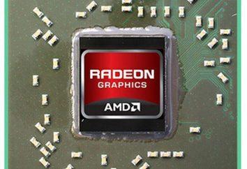 Radeon HD 8670M. Karta graficzna Radeon HD 8670M