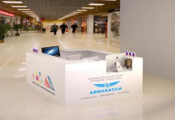 Samobilet.ru: como poupar dinheiro em viagens aéreas