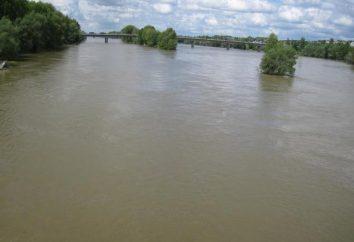 Loara – rzeka we Francji: opis