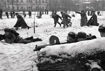 A batalha de Moscou: um resumo da operação. Heróis Battle for Moscow