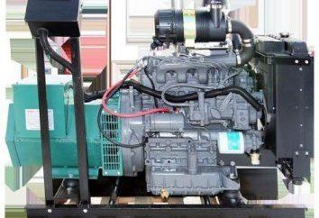 Como conectar uma rede 220V motor trifásico: dicas