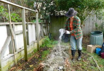 Cinzas de madeira como fertilizante – uma ferramenta indispensável no jardim e o jardim
