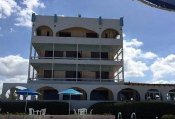 Tsagarakis Plage Hôtel 3 * (Grèce, Crète.): Avis, descriptions et commentaires