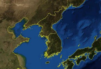 Corea del Nord e Corea del Sud – un confronto. regime politico. Il tenore di vita. cultura