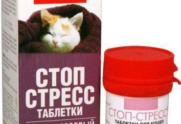 Le médicament pour les chats « Arrêter le stress »: description, instructions pour les vétérinaires d'utilisation et de rétroaction