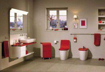 Podłogi i toalety wiszące Roca: opinie klientów