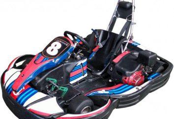 Karting – o que é: entretenimento ou esportes?