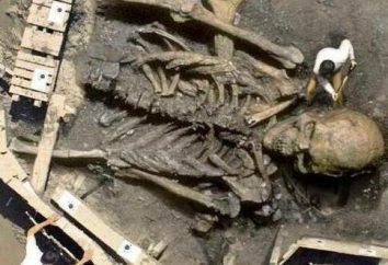 Gigantyczne szkielety ludzi: prawda lub fałszowanie bronią?