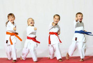 Para onde enviar seus filhos para 3 anos? seção de esportes para crianças. Seção para a criança 3 anos