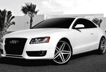 """Lineup """"Audi"""": najpopularniejsze samochody znanego niemieckiego producenta"""