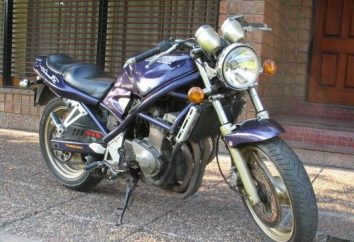 Suzuki Bandit 400 – Fakty