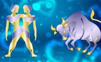 In quali settori della vita eventuale compatibilità delle donne e degli uomini Taurus-Gemini