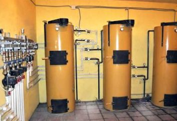 """""""Stropuva"""" (calderas): revisiones. calderas de combustibles sólidos """"Stropuva"""": precios"""