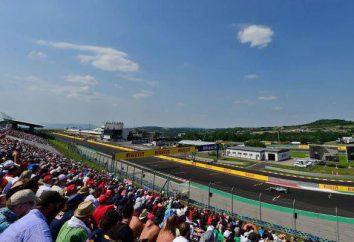 """Formule 1"": Grand Prix de Hongrie"