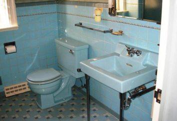 kolor toaleta we wnętrzu. sanitarny główna