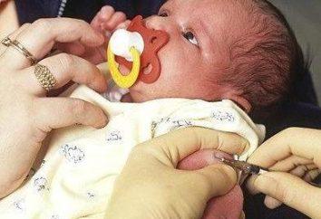 Vale a pena fazer BCG em recém-nascidos?